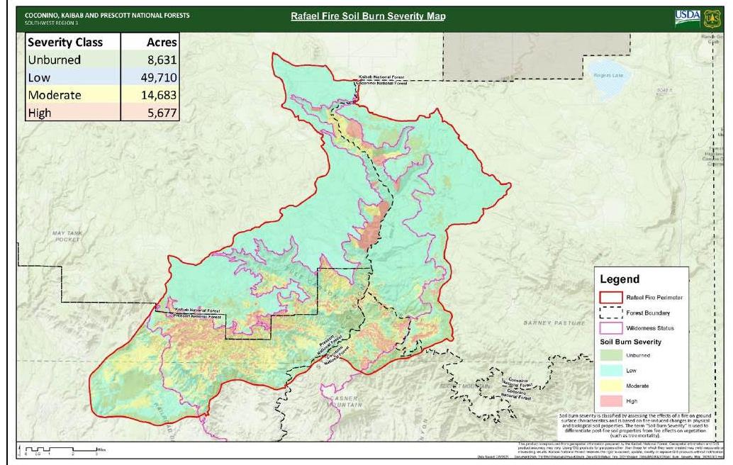 Rafael Fire Soil Burn Severity Map