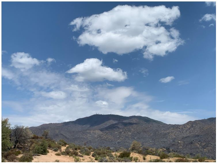 Telegraph Fire - view from El Capitan 6-24-21, credit Molly Hunter