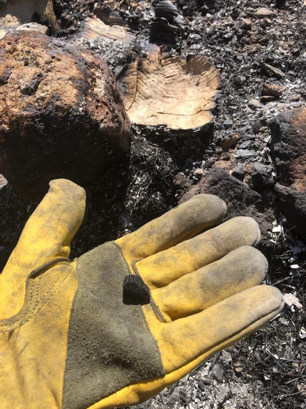 photo of a yellow gloved hand holding a small piece of burned material